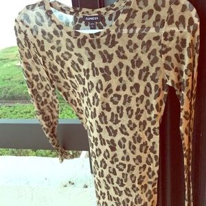Express leopard sweater Sheer Top